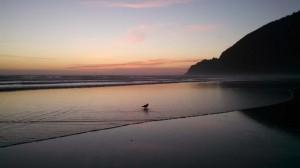 Peaceful last evening at the Oregon coast.