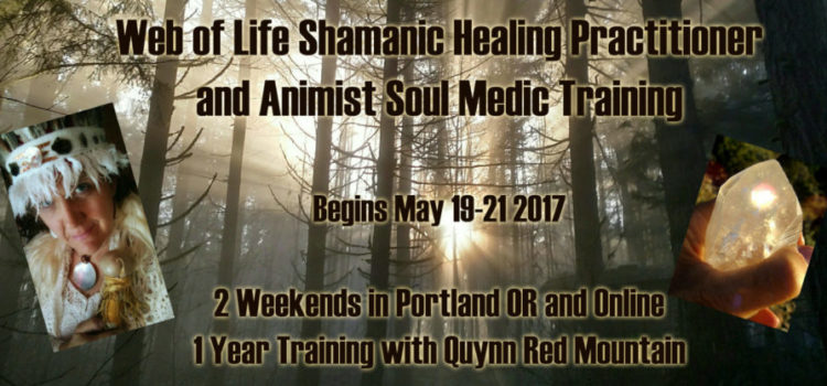 New Shamanic Animist Training in Portland and Online-Q and A